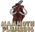 Mammoth Cleaning Logo
